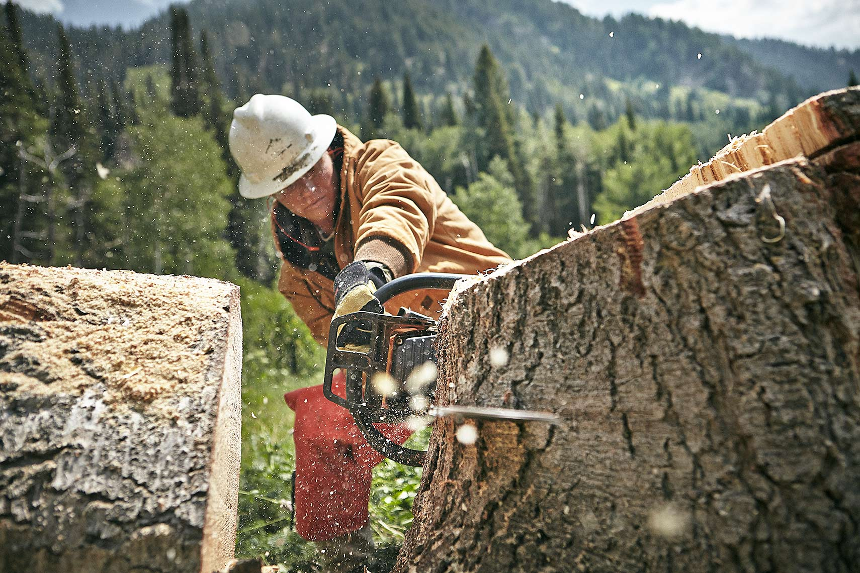 Chainsaw-Utah-Wolverine-Forestry-02_721_RT